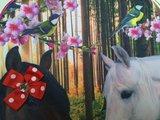 De Kunstboer rugzak paard _