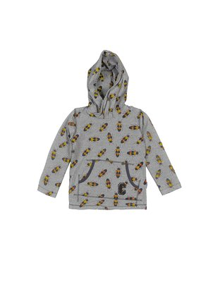 Claesen's Hoody Insect