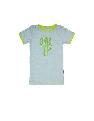 Claesen's pyjama cactus
